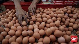 Mengenal Dioksin yang Cemari Telur Di Jawa Timur