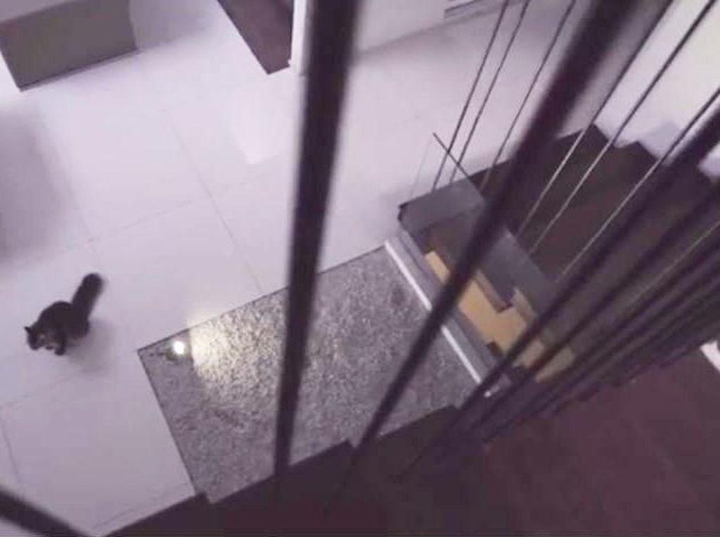 Foto: Gaya Minimalis Rumah Raditya Dika yang Diduga Berhantu