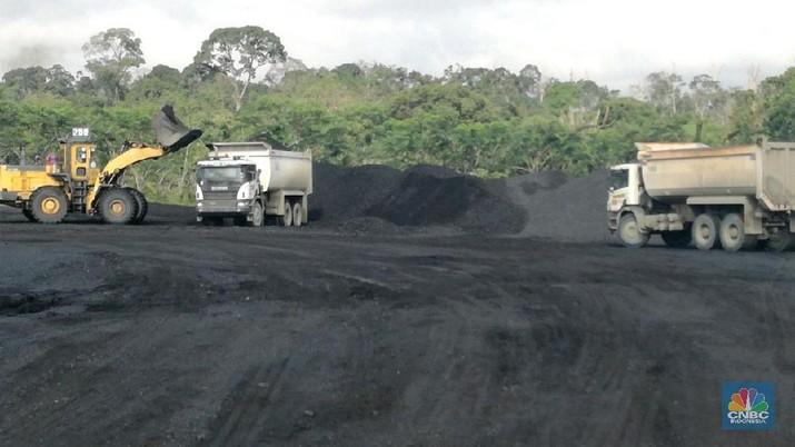 Akuisisi Nusa Persada, Cadangan Batu Bara ITMG Bertambah