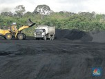 Jatuh Lagi, Harga Batu Bara di Titik Terendah Dalam 3,5 Bulan