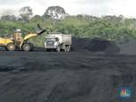 Batu Bara RI Dibayangi Corona, Investasi & PNBP 2020 Suram