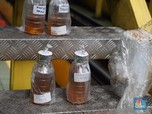 Jokowi Minta Campuran Sawit di Biodiesel Naik Jadi 30%