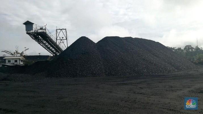 Harga Batu Bara Tembus US$115/ton, Tertinggi Dalam 6 Tahun
