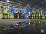 Asyik! Pertamina Ongkosi Karyawan untuk Coblos Pilkada