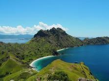 Tarif Diusulkan Rp14 Juta, Berapa Biaya Masuk Pulau Komodo?