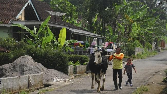 Warga melintas di Desa Urutsewu, Ampel, Boyolali, Jawa Tengah, Jumat (18/5). Desa Urutsewu menjadi salah satu desa mandiri energi gas yang mengembangkan energi Biogas Sapi, hasil inovasi bahan bakar gas buatan dari kotoran sapi. (ANTARA FOTO/Aloysius Jarot Nugroho)