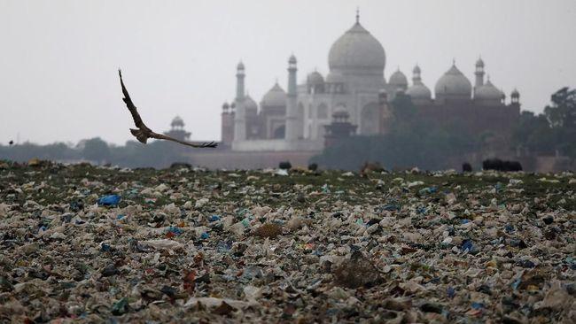 Taj Mahal di Bawah Ancaman Monyet