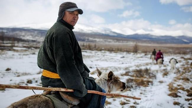 Begitu berada di tempat terbuka, rusa itu langsung membawa penggembalanya melangkah berhati-hati, melintasi pepohonan tumbang, menyisir jalanan yang dipenuhi lelehan salju. (REUTERS/Thomas Peter)