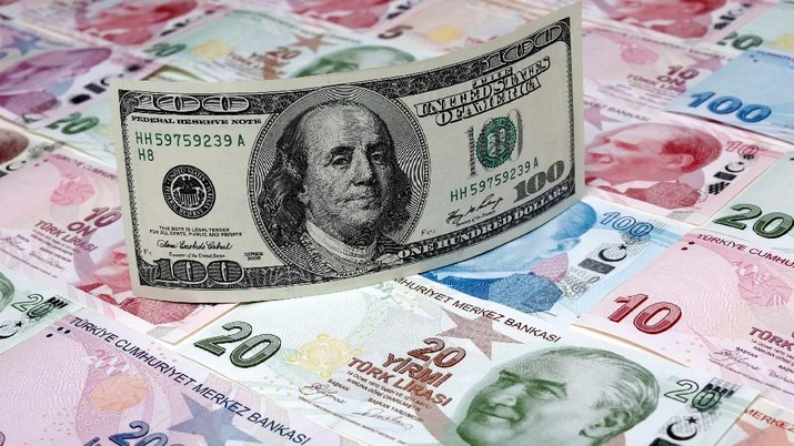FILE PHOTO: A photo illustration taken in Istanbul shows a U.S. 100 dollar banknote against Turkish lira banknotes of various denominations January 7, 2014. REUTERS/Murad Sezer/Illustration
