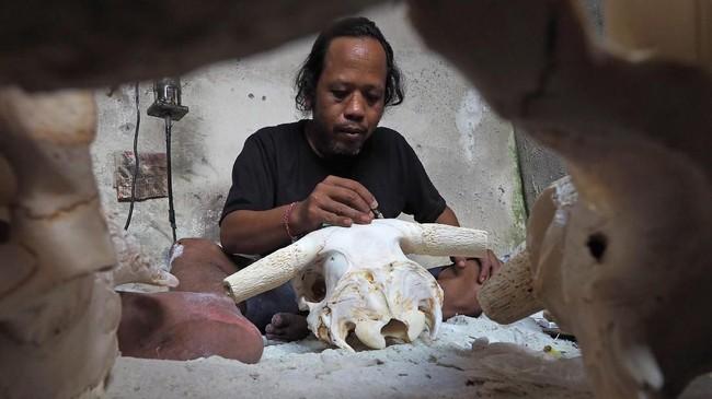 Ahli ukir asal Pulau Dewata, I Gede Parna (41), menciptakan ukiran seni dengan bahan baku tulang kepala kerbau yang sudah dikuliti dan dibersihkan. (Anadolu Agency/Mahendra Moonstar)