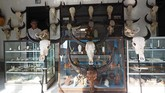 Harga ukiran kepala kerbau ciptaan I Gede Parna ini dijual dengan berbagai bervariasi menurut ukurannya.(Anadolu Agency/Mahendra Moonstar)