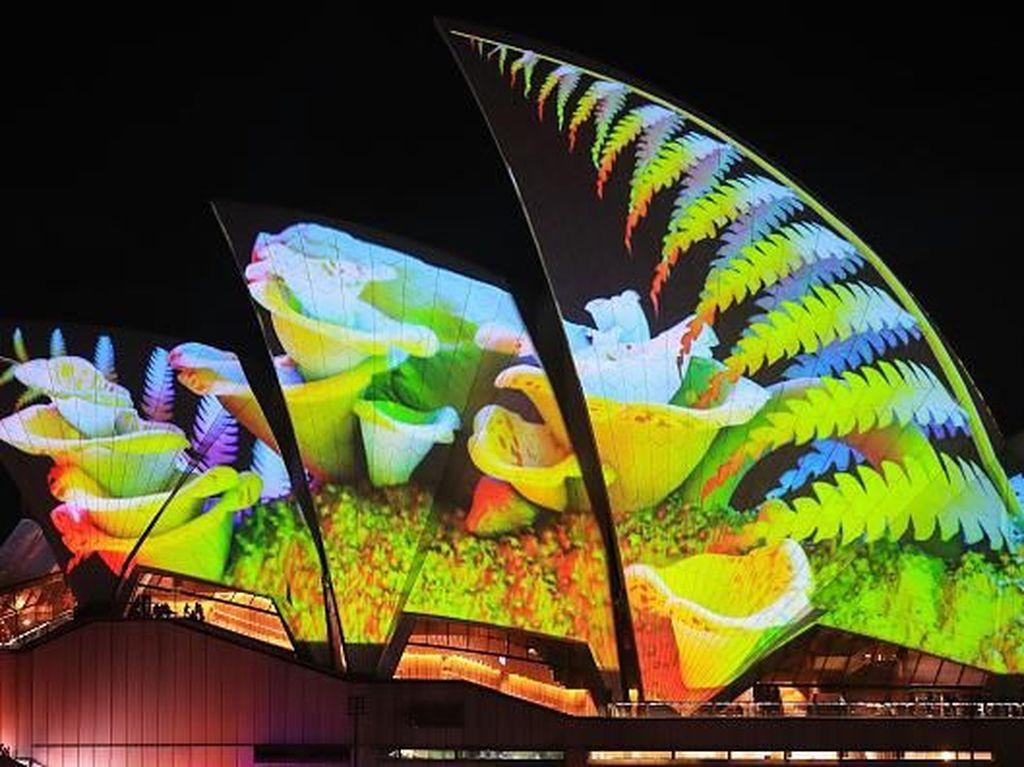 Salah satu detail video mapping yang ditayangkan di Sydney Opera House menggambarkan tentang keindahan bunga. Brendon Thorne/ Getty Images.