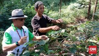 Petani Kopi Puntang Keluhkan Bantuan Pupuk pada KSP Moeldoko