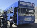 Charmaghz, Perpustakaan Keliling buat Anak-anak Afghanistan