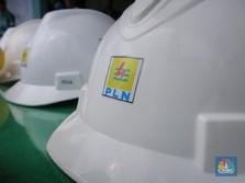 Keuangan Merugi, PLN Nantikan Realisasi DMO Gas Pembangkit