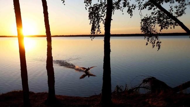 Matahari terbenam di belakang sebuah danau di dekat kota Vileika, Belarusia. (REUTERS/Vasily Fedosenko)
