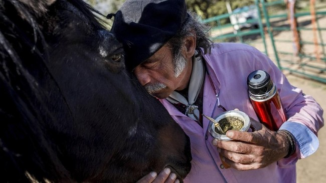 Fernando Noailles sendiri memiliki kemampuan untuk membaca gerakan-gerakan kuda karena bertahun-tahun hidup dengan kawanan kuda liar. Ia kini berusia 57 tahun. (REUTERS/Juan Medina)