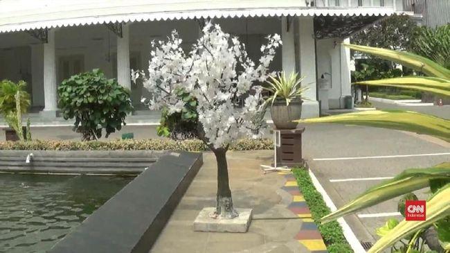 Pemprov DKI Akan Pasang Lagi Pohon Plastik