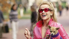 Kisah Si Pengacara Pirang 'Legally Blonde 3' Sedang Digarap