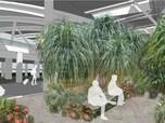 Menhub Buka Suara Soal Minat AirAsia Bangun Terminal 4 Soetta