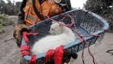 Sementara itu, warga juga membantu petugas menyelamatkan binatang peliharaan yang ada di sekitar rumah mereka. (Reuters/Carlos Jasso)