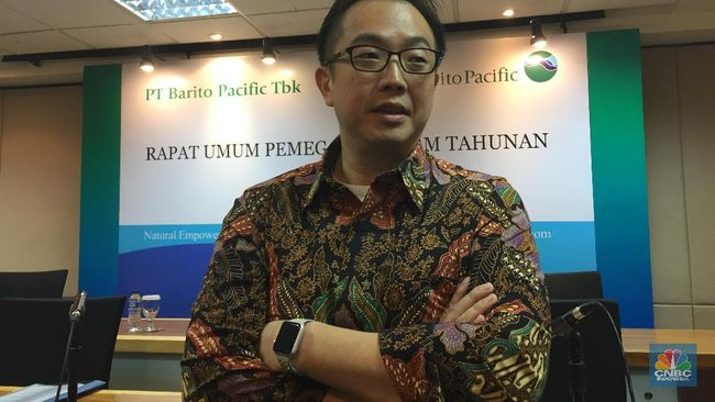 TPIA BRPT Akuisisi Star Energy, Pendapatan Barito Pacific akan Naik 50%