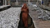 Beberapa wanita Rohingya mendapat pekerjaan mengeringkan ikan di pekarangan dekat Nazirartek, dengan bayaran 100-200 taka. (REUTERS/Clodagh Kilcoyne)