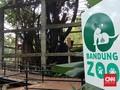 28 Ribu Wisatawan Kunjungi Kebun Binatang Bandung