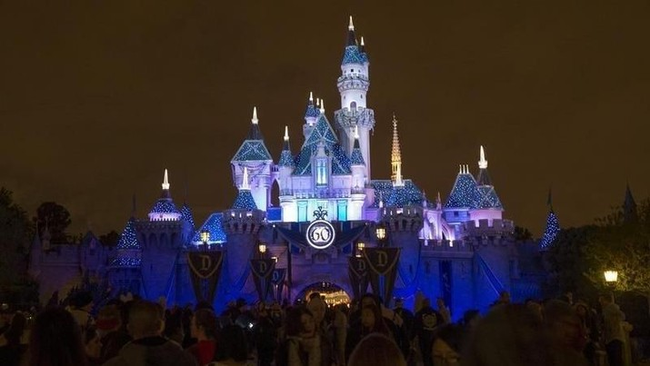 Sleeping Beauty's Castle is pictured during Disneyland's Diamond Celebration in Anaheim, California May 23, 2015. REUTERS/Mario Anzuoni