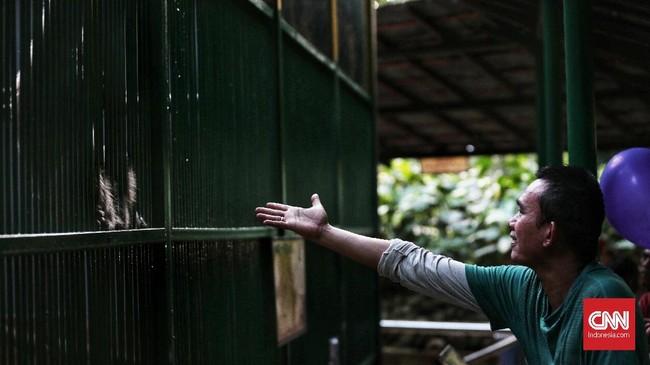 Kepala Satuan Pelaksana Promosi dan Pengembangan Masyarakat Ragunan Ketut Widasana mengatakan bahwa Ragunan menjadi pilihan warga karena berbagai faktor. Selain lokasi yang strategis, harga tiket masuk juga terjangkau. (CNN Indonesia/Andry Novelino)