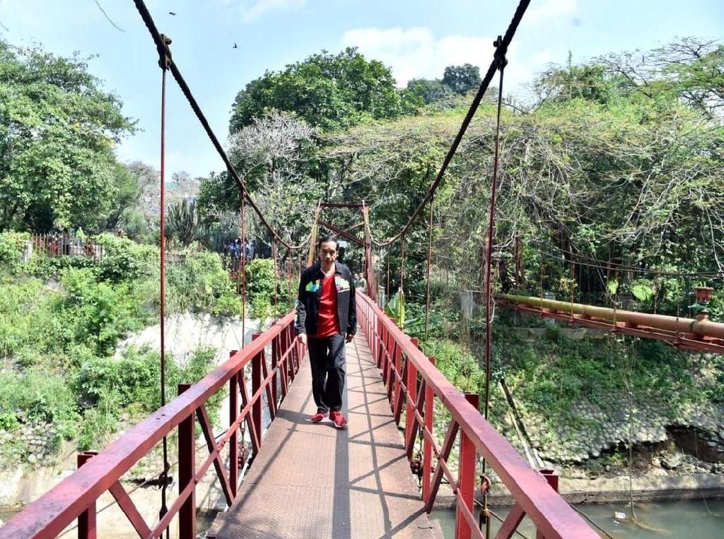 Jokowi sempat foto di Jembatan Merah yang juga dikenal sebagai jembatan cinta. Jembatan ini menyimpan mitos yang terus bikin pengunjung Kebun Raya Bogor penasaran. (Foto: Kris - Biro Pers Setpres)