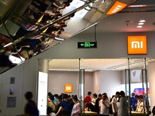 Gara-gara Xiaomi, Harga Saham Ini Naik 2 Kali Lipat