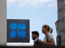 OPEC: Permintaan Minyak Melambat di 2019