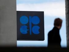 Awal Tahun Harga Minyak Naik, tapi Ada Kabar Buruk dari OPEC