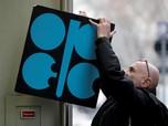 OPEC Mulai Rem Produksi, Harga Minyak Sedikit Terkerek