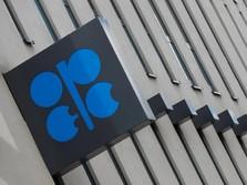 Dari Trump Sampai Khashoggi, Ini 5 Sorotan di Sidang OPEC
