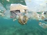 Australia Terancam Sampah Plastik