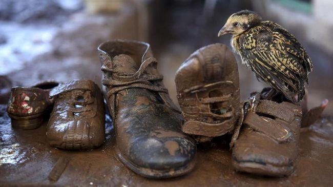 Banjir Terjang Mandailing Natal, 77 Rumah Hanyut