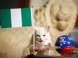 Nigeria vs Argentina, Achilles Kucing Peramal Pilih Mana?