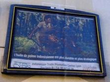 RI Menang Lagi, Iklan Sawit di Eropa Bebas Pelanggaran