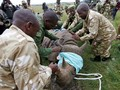 FOTO: Menyelamatkan Badak Hitam Kenya