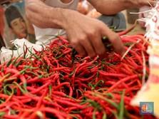 Harga Bahan Makanan Naik, Inflasi Juni 0,59%