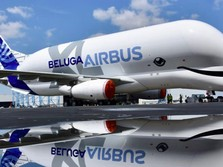Wow, Ini Penampakan Pesawat Super Besar 'Paus BelugaXL'