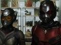 Peyton Reed Kembali Sutradarai 'Ant-Man 3'