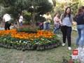 VIDEO: Pameran Bunga Usai Perang Suriah