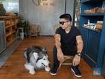 Ini Perjalanan 'Karir' Anjing Berduit Ratusan Juta Rupiah