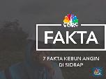 Video: 7 Fakta Kebun Angin Raksasa RI di Sidrap