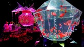 Acara yang secara resmi bernama Eco Edo Nihonbashi Art Aquarium ini diselenggarakan setiap musim panas sejak 2011. Awalnya, acara ini ditujukan untuk merayakan ulang tahun ke-100 jembatan di Nihonbashi. (REUTERS/Kim Kyung-Hoon)