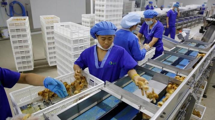 China melaporkan pertumbuhan manufakturnya melambat di bulan Oktober akibat kembali meningkatnya perselisihan dagang dengan Amerika Serikat (AS).