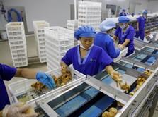 Perang Dagang Lemahkan Pertumbuhan Manufaktur China
